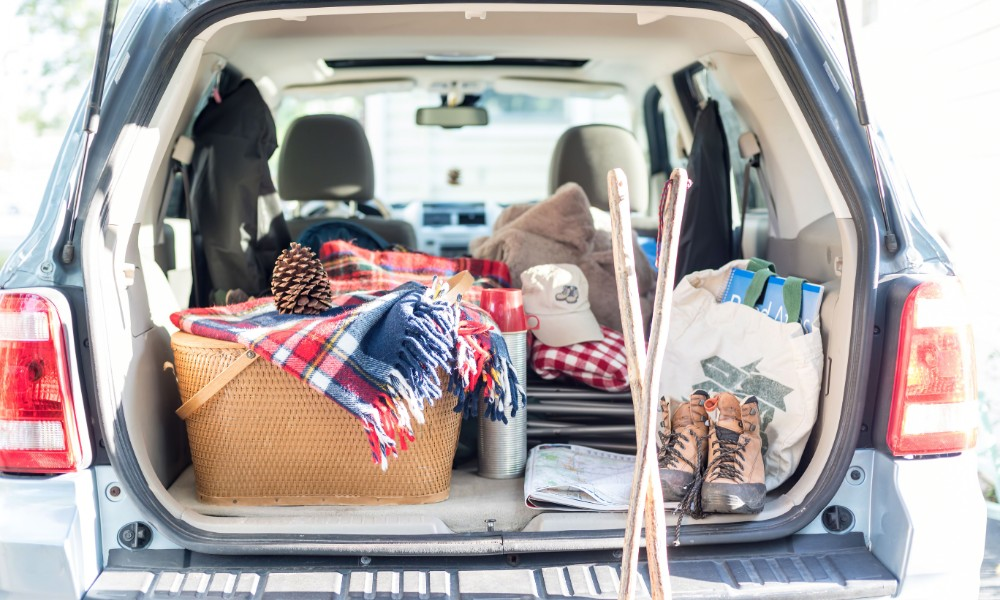 The 10 Best Trunk Organizers You Can Buy Online Insider Car News